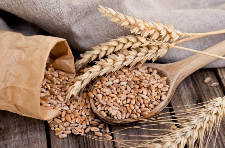 Transformateurs - Arcour : négoce en céréales biologiques