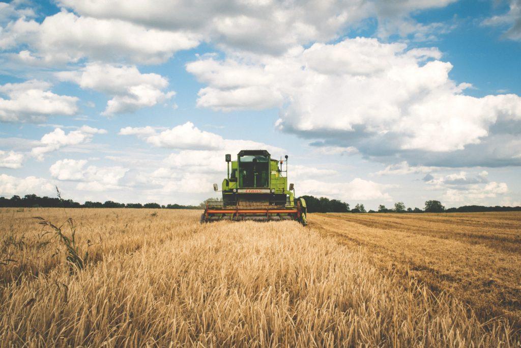 récolte de céréales biologiques Active bio-négociant en céréale biologique