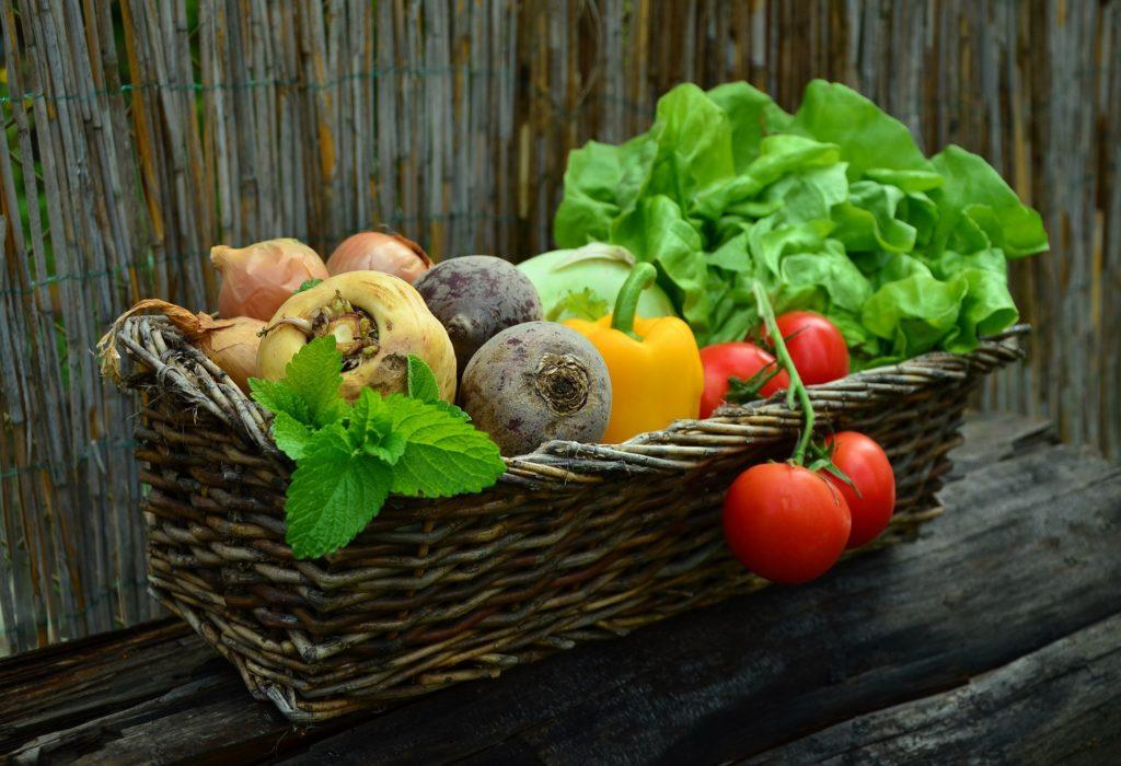 manger des produits bio Active Bio négociant en céréale bio